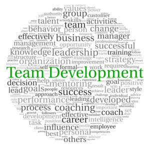 Is team development what you need