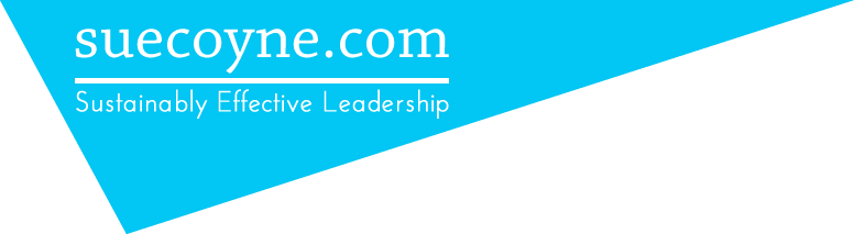 Effective Leadership Coaching | Suecoyne.com